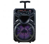 Тонколона активна RANCORE X11, 1000W, 1 безжичен микрофон, LED дисплей и диско осветление, Презарежд...