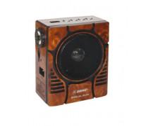 Радио Rising RS-554, Щипка за колан, Вход за микрофон, LED фенер, USB вход & SD слот, Караоке фу...