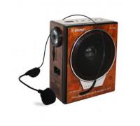 Радио Rising RS-599, LED фенер, Щипка за колан, Вход за микрофон, USB вход & SD слот, Караоке фу...