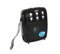Радио Rising RS-M03UAR, Изход за слушалки, Щипка за колан, Вход за микрофон, USB вход & SD слот,...