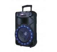 Преносим високоговорител Elekom ЕК-1905, Мощност: 500 W, LED осветена, 2 Безжични микрофона